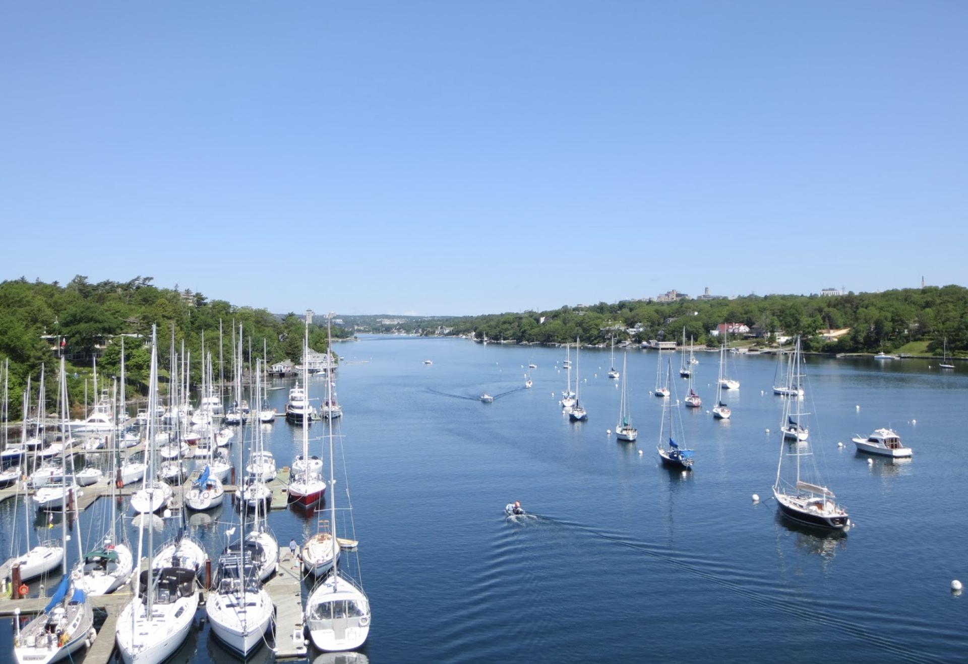 Boats at the Marina near Ocean Yacht Sales